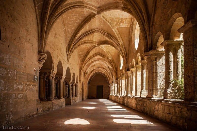 Cloître- Abbaye de Valmagne